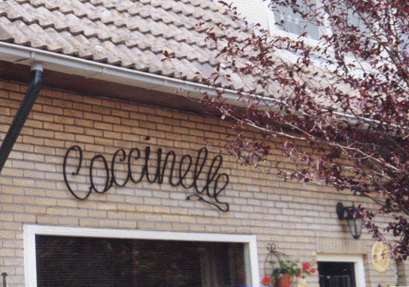 https://www.siersmederijpladdet.nl/wp-content/uploads/2020/11/gesmede-naam-coccinelle.jpg